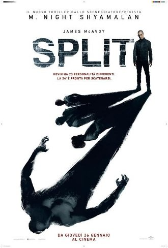 split_2017